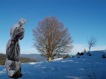 008 schneefraus spaziergang